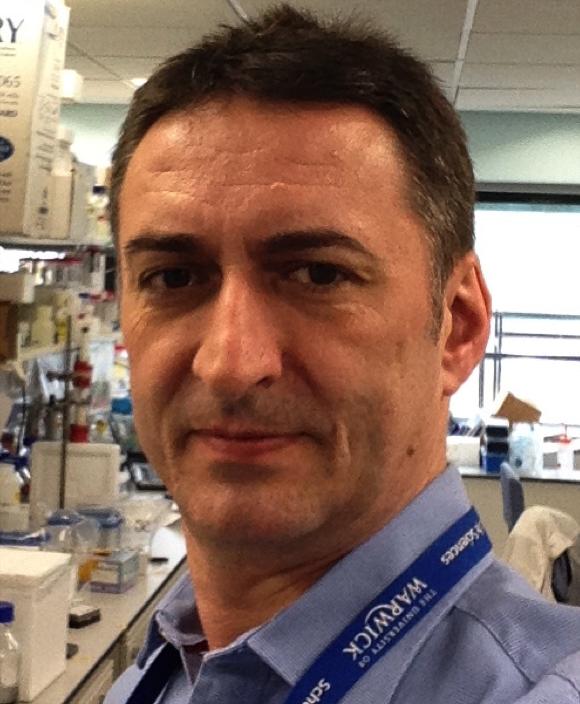 Dr David Roper